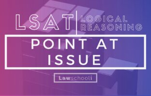 LSAT LR point at issue questions